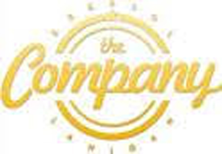 The Company 1