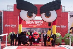 angry birds pic majestic