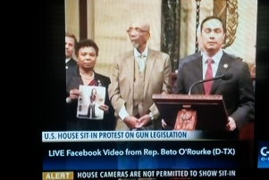 CSPAN gun control sit-in screen grab