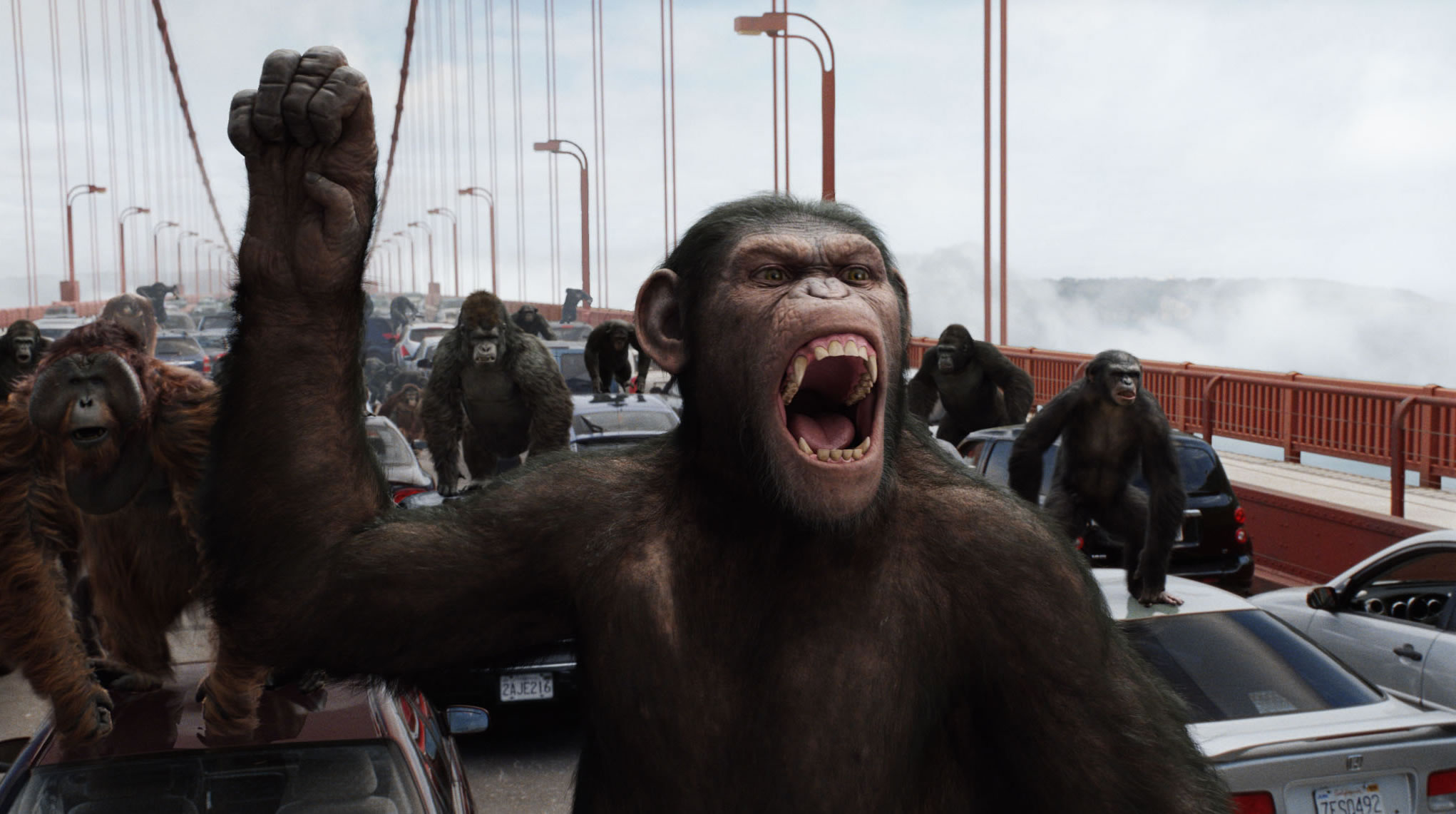 rise-of-the-planet-of-hte-apes.jpg