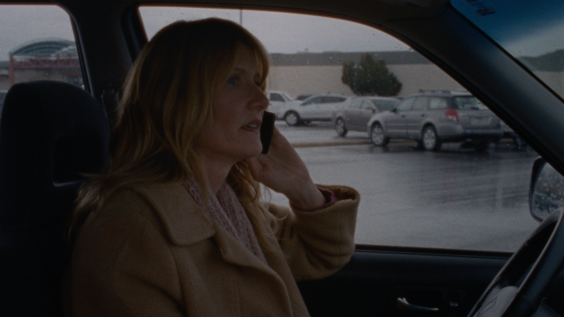 Laura Dern - Certain Women.jpeg