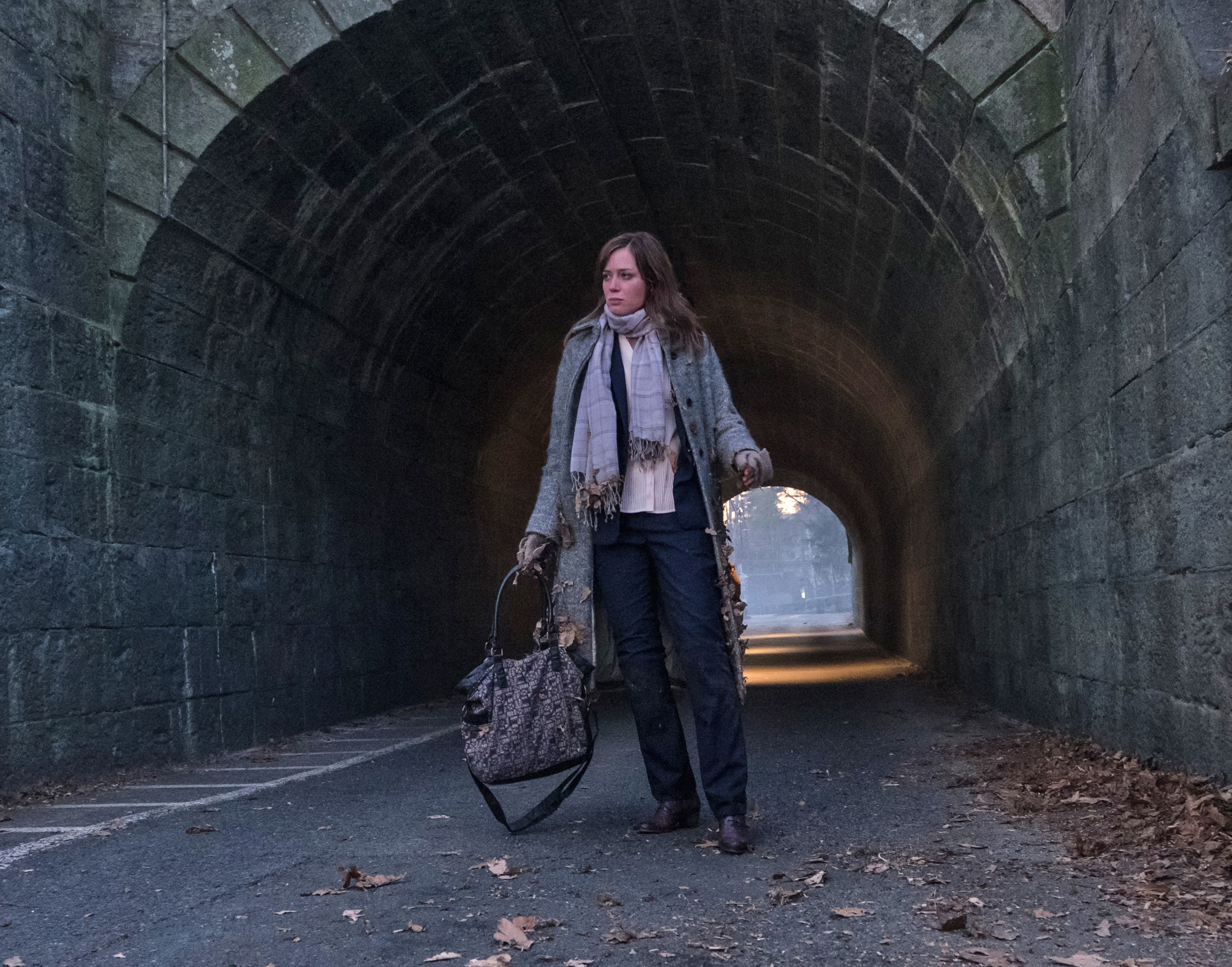 Emily Blunt - The Girl on the Train.jpeg