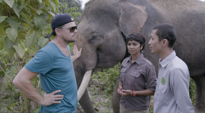 DiCaprio in Indonesia for 'Before The Flood.'