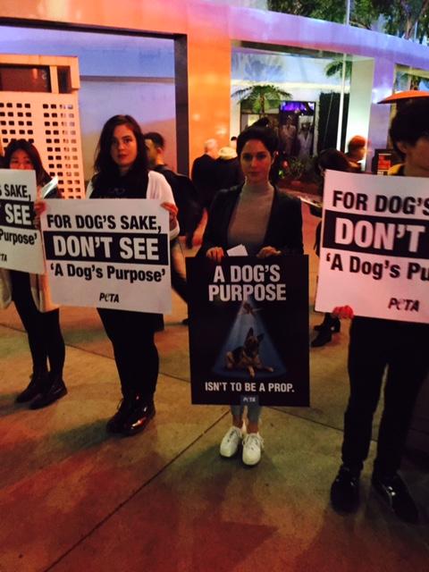 A Dog's Purpose Protest 2