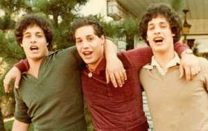 Three Identical Strangers.jpeg