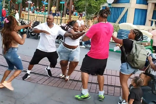 A fight broke out at Disneyland on Saturday, July 6, 2019. (Credit: YouTube)