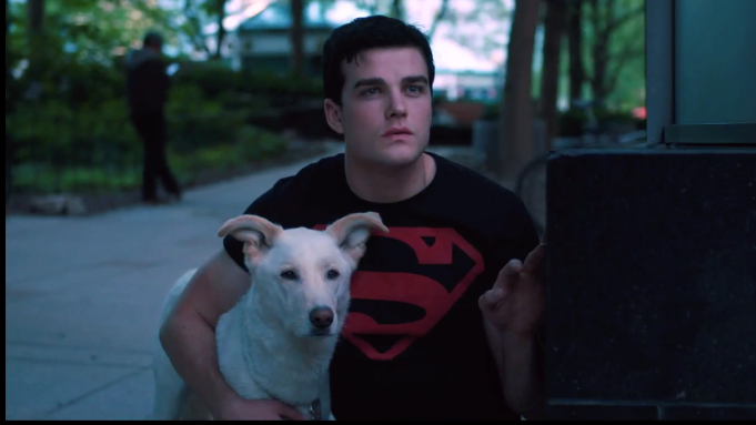 Titans Krypto Superboy DC Universe