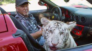 Jeff Lowe in 'Tiger King'
