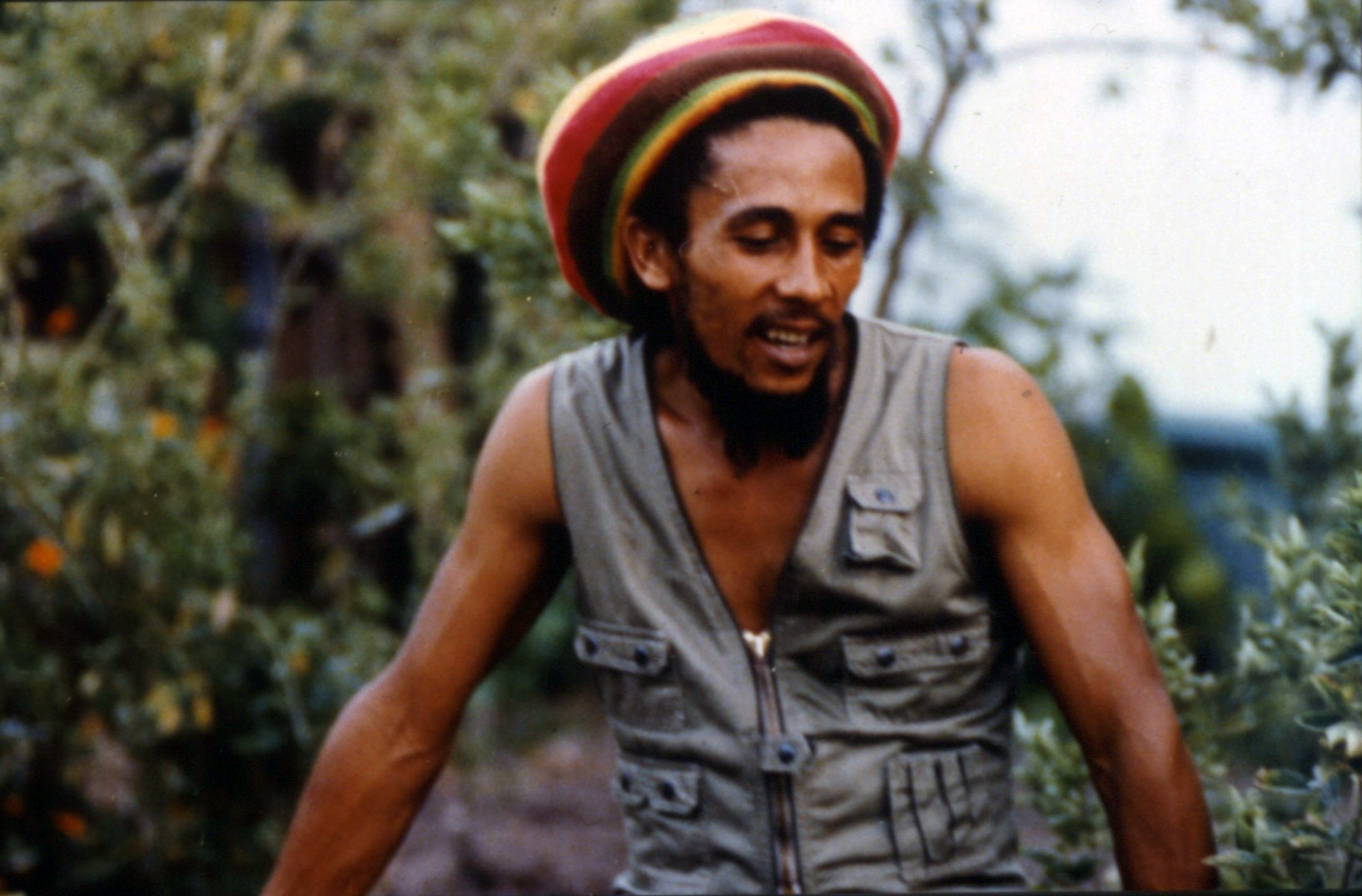 TriCoast Acquires Bob Marley Documentary 'Reggae Sunsplash' – Deadline