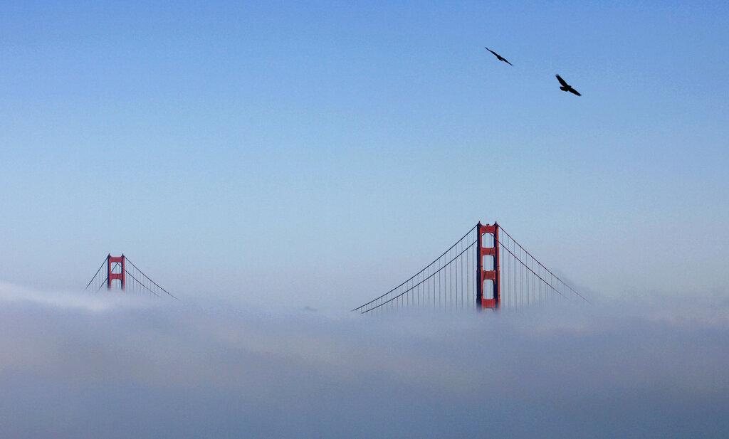 San Francisco Guarantees Local Artists $1,000 Per Month Income