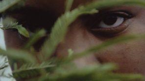 Gambar dari'A Love Song for Latasha'