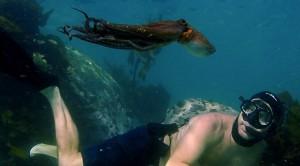 Craig Foster in 'My Octopus Teacher'