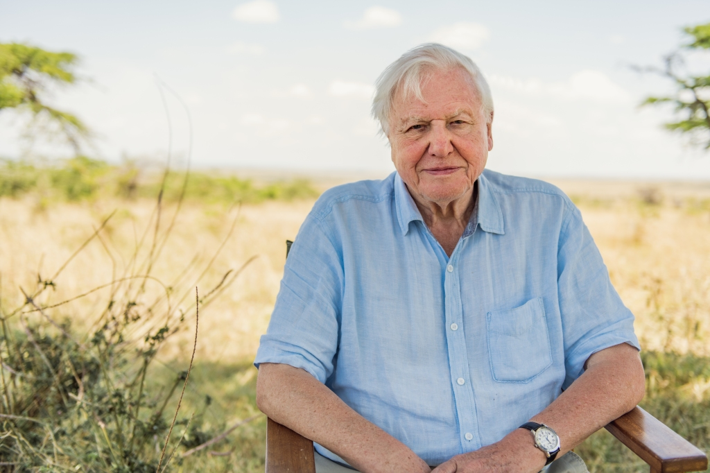 Watch First Trailer For David Attenborough's Netflix Climate Change Doc 'Breaking Boundaries: The Science Of Our Planet'; Release Date Set.jpg