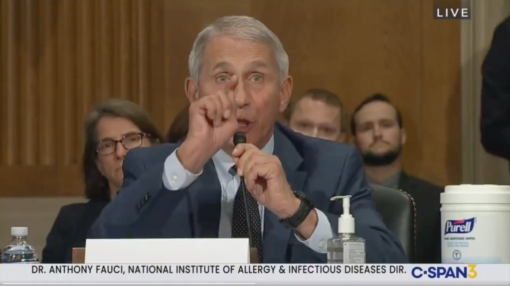 """Fauci Rips Into Rand Paul During Televised Hearing: """"Senator Paul, You Do Not Know What You Are Talking About, And I Want To Say That Officially"""".jpg"""