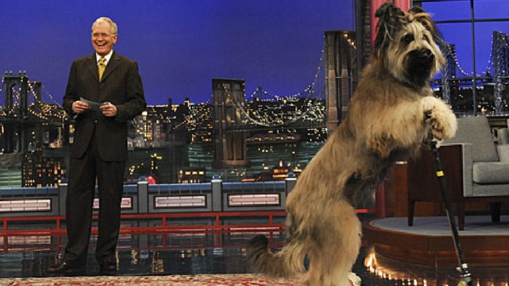 David Letterman's 'Stupid Pet Tricks' Reimagined As TBS Comedy Variety Series Hosted By Sarah Silverman.jpg
