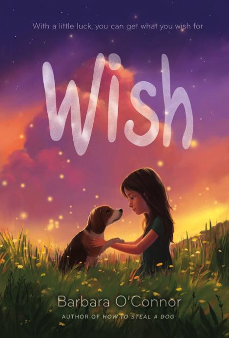 'Wish' book cover
