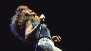 Tina Turner in concert in 1990