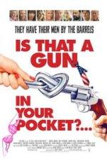 gunpocketposter